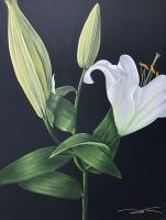 C20-001 36 by 48 inch Whitel Lily Side View.jpg